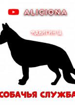 Собачья служба