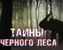 Тайны чёрного леса