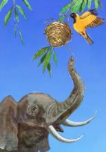 Птичка и слон